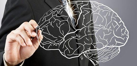 O Capital Intelectual e a Atualização do Conhecimento
