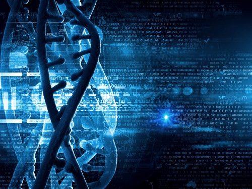 Continuous Evolution: A Evolução Contínua e o Novo Perfil do Ser Humano