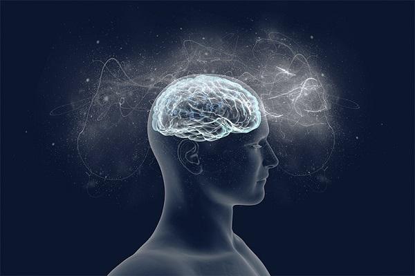Conexões Neurais e Conhecimentos Naturais, através da Vivência da Constelação Sistêmica