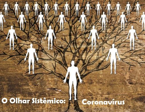 Corona Vírus: O Olhar Sistêmico